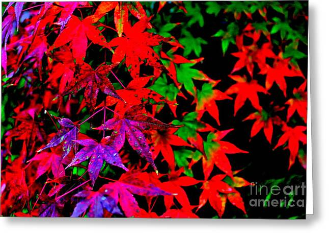 Abstract Leaves Greeting Card by Jay Nodianos