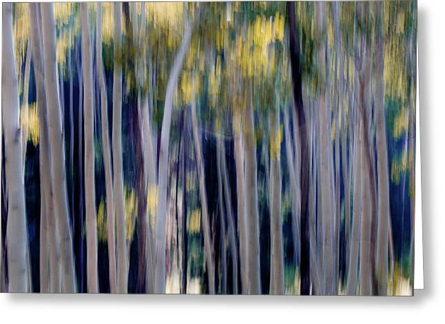 Abstract Of Aspen Trees Greeting Card by Ben Horton