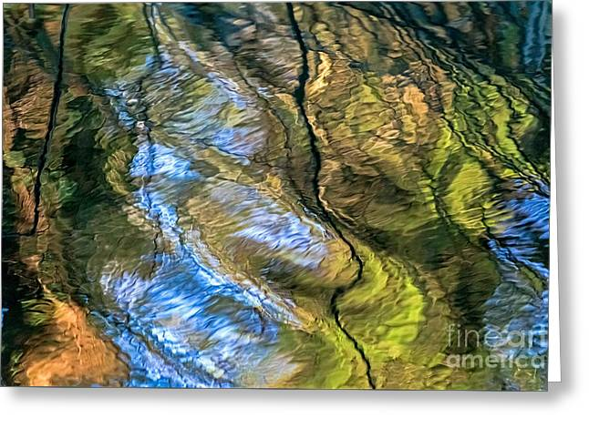 Abstract Of Nature Greeting Card