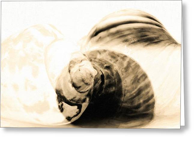 Abstract Sea Shells In Oil Paint  Greeting Card by Tommytechno Sweden