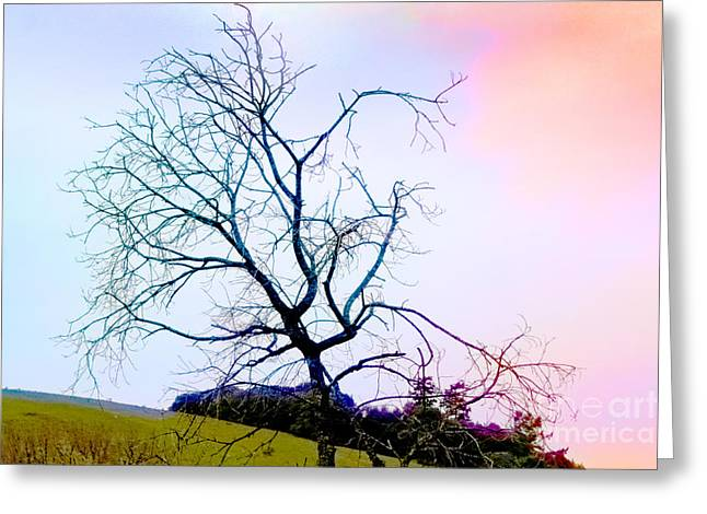 Abstract Tree Wrapped In Color Of Water Greeting Card