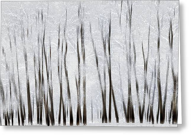 Abstract Trees With Motion Blur Greeting Card by Ron Harris