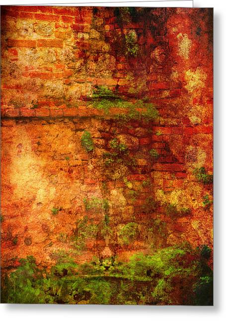 Abstract Vines On Wall - Radi Italy Greeting Card