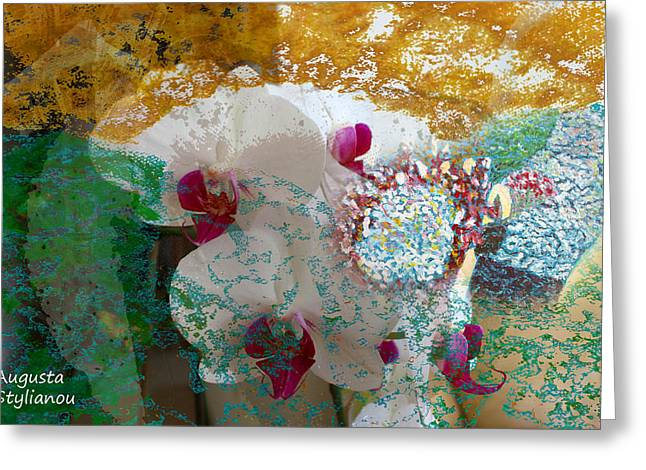 Abstract White Orchid Greeting Card by Augusta Stylianou
