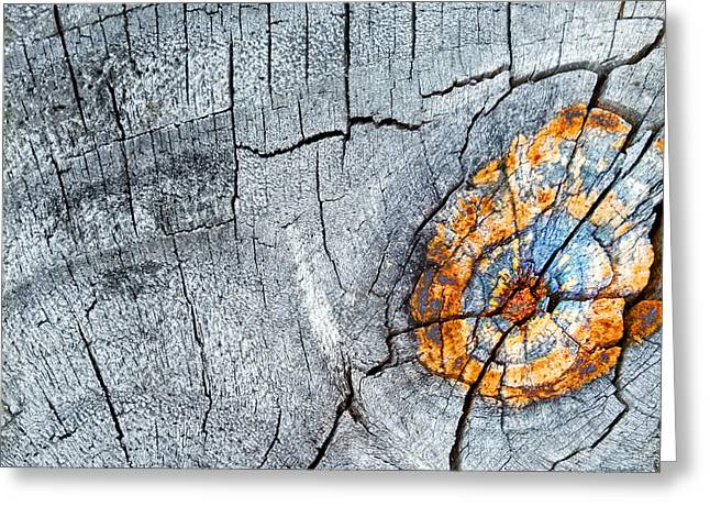 Abstract Woodgrain Upclose 6 Greeting Card
