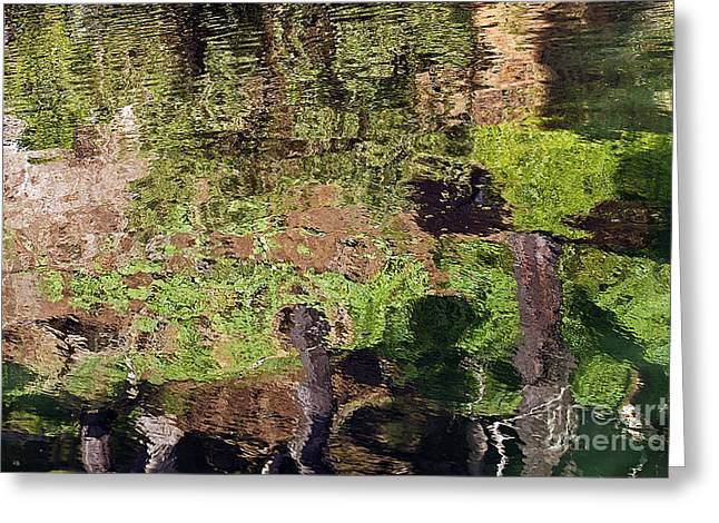 Greeting Card featuring the photograph Abstracted Reflection by Kate Brown