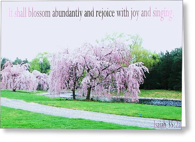 Greeting Card featuring the photograph Abundant Blossom by Pamela Hyde Wilson