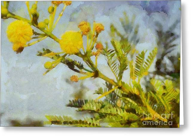 Greeting Card featuring the painting Acacia by Kai Saarto