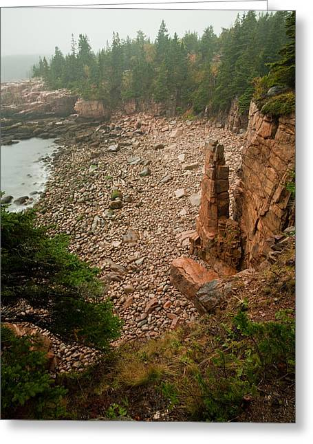 Acadia Fog At Monument Cove 4337 Greeting Card by Brent L Ander