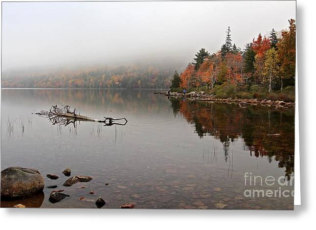 Acadia In The Fog Greeting Card