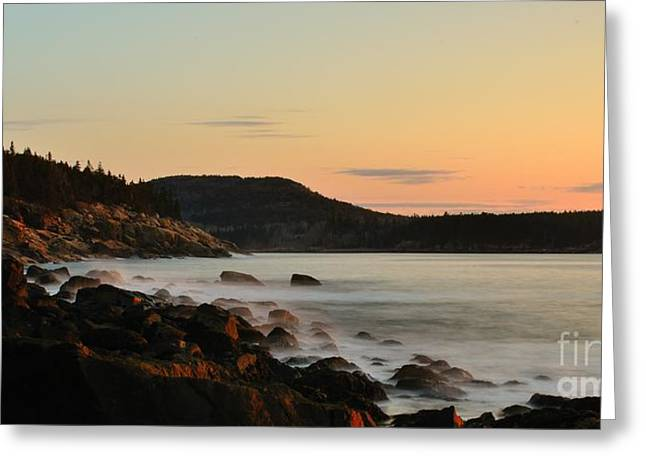 Acadia Morning Greeting Card by Paul Noble