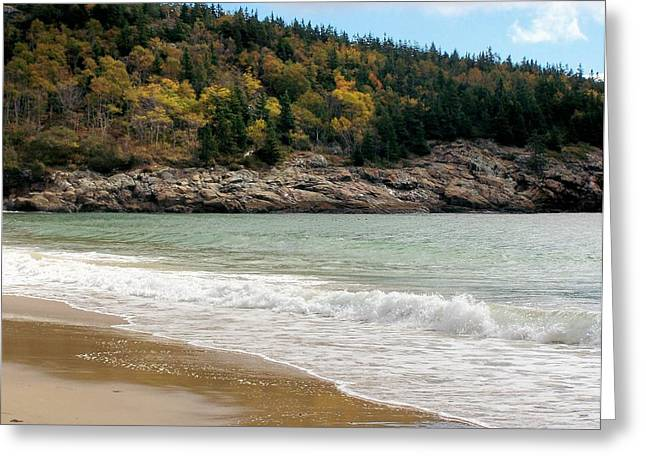 Greeting Card featuring the photograph Acadia National Park by Gene Cyr