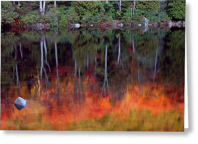 Acadia National Park, Maine Greeting Card by Scott T. Smith