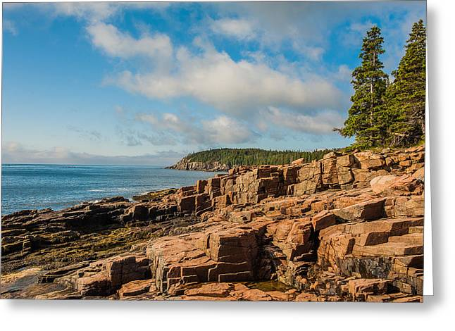 Acadia Shoreline Greeting Card