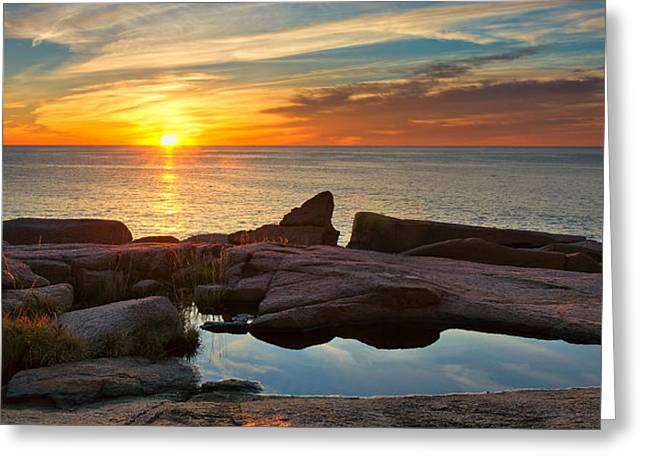 Acadia Sunrise Greeting Card by Darylann Leonard Photography