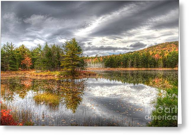 Acadia With Autumn Colors Greeting Card
