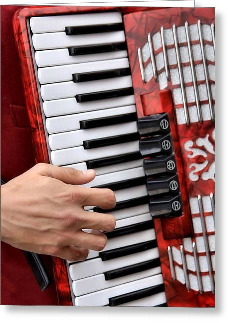 Accordian Greeting Card by James Stough