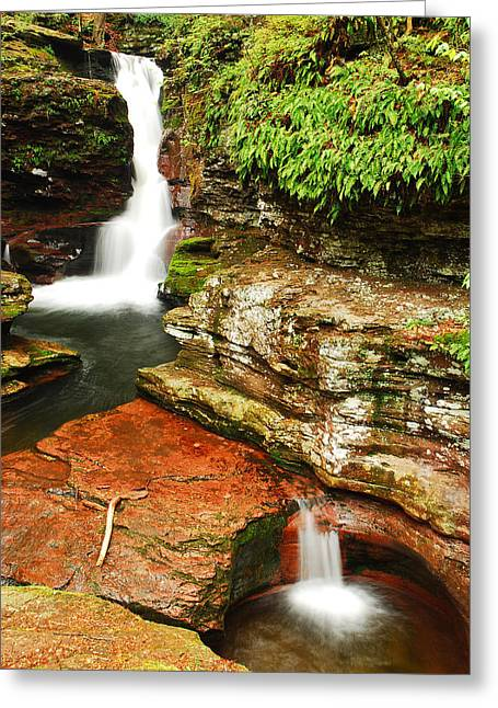 Greeting Card featuring the photograph Adams Falls by James Kirkikis