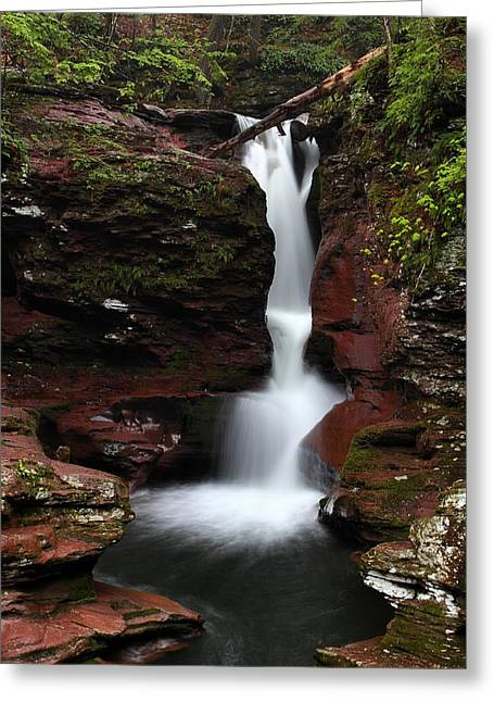 Adams Falls Greeting Card by Mike Farslow