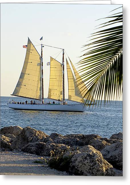 Sailing On The Adirondack In Key West Greeting Card