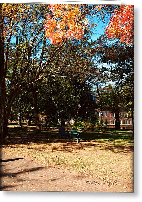 Adirondack Chairs 4 - Davidson College Greeting Card by Paulette B Wright