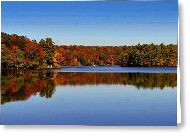 Adirondack October Greeting Card by Diane E Berry