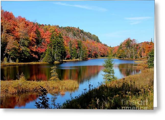 Adirondack Splendor Greeting Card