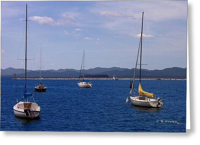 Adirondacks From Burlington Harbor Greeting Card