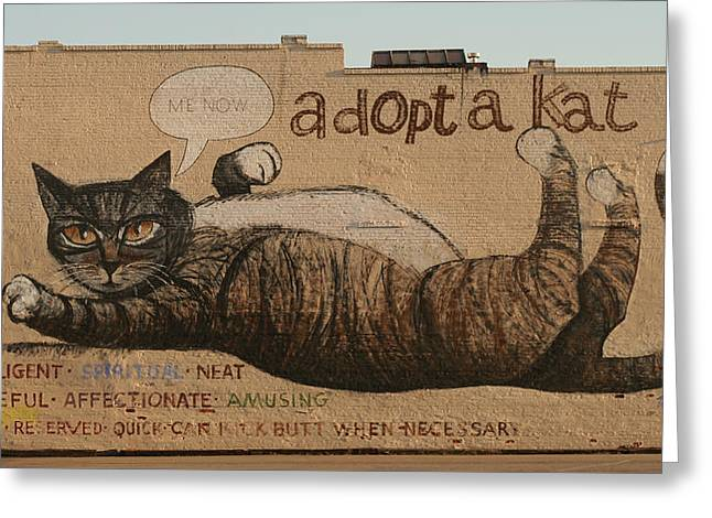 Adopt A Kat Or Me Now Greeting Card