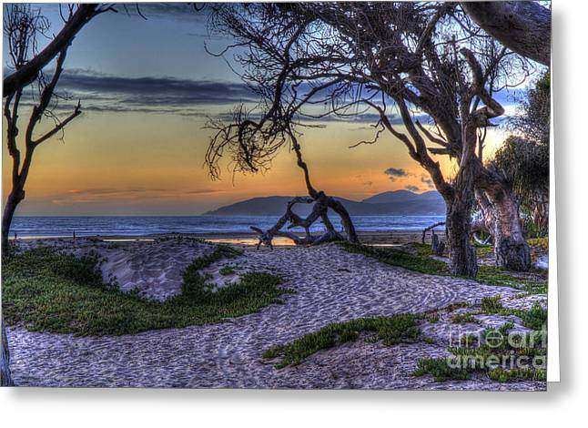 Adventures At Sunset Beach Greeting Card