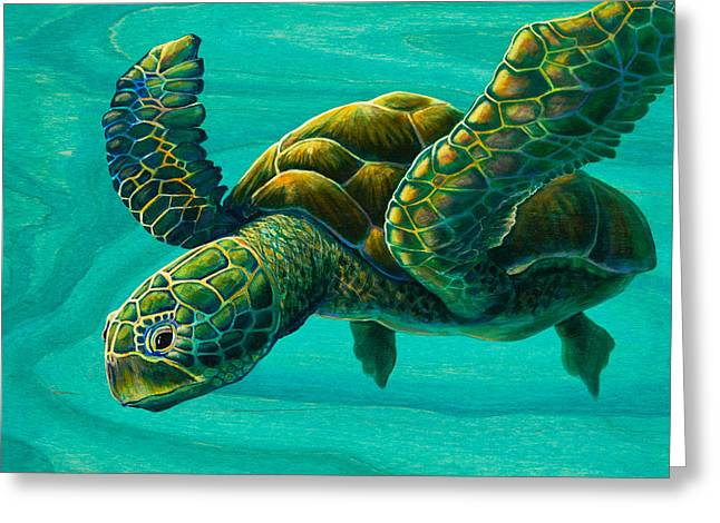 Aeko Sea Turtle Greeting Card by Emily Brantley