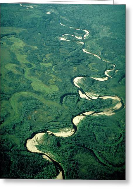 Aerial View Of River Meanders And Ox-bow Lake Greeting Card