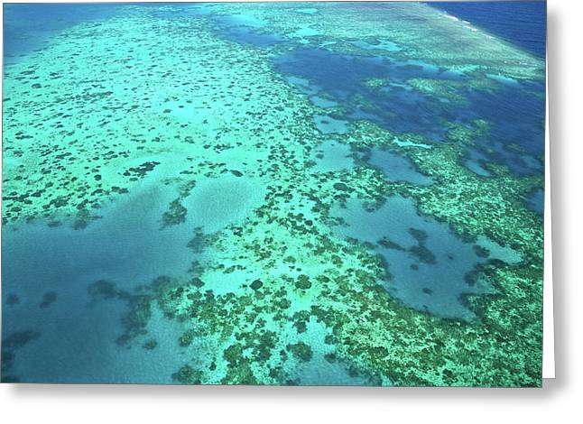 Aerial View Of The Great Barrier Reef Greeting Card by Miva Stock
