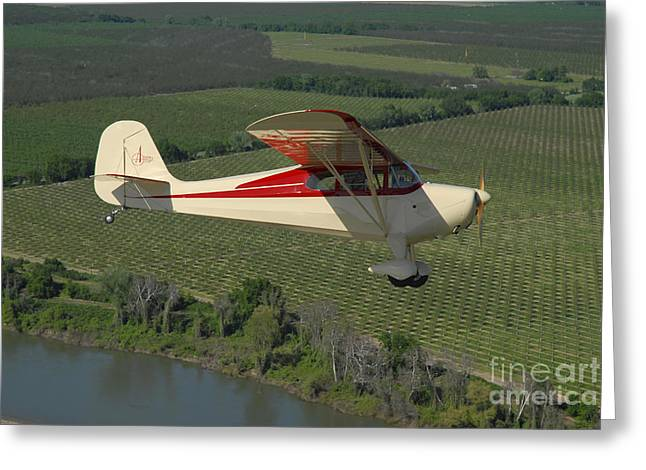 Aeronca Chief Flying Over Sacramento Greeting Card by Phil Wallick