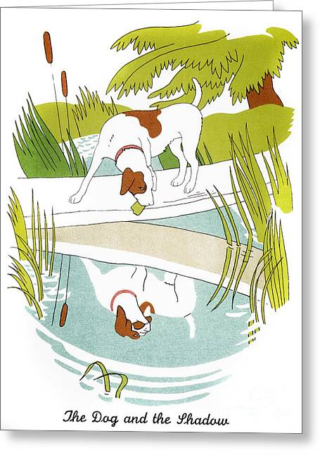 Aesop: Dog & Shadow Greeting Card by Granger