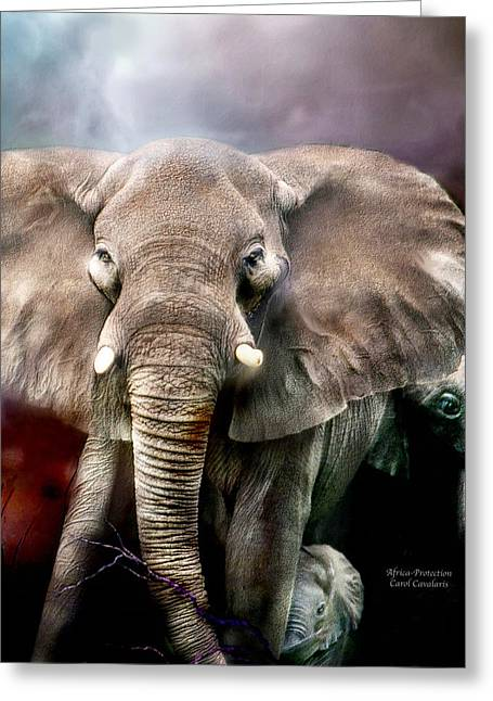 Africa - Protection Greeting Card by Carol Cavalaris
