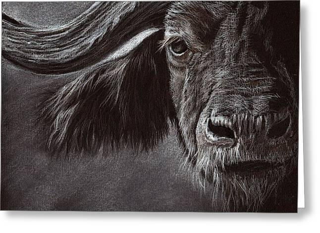 Greeting Card featuring the drawing African Buffalo by Heidi Kriel