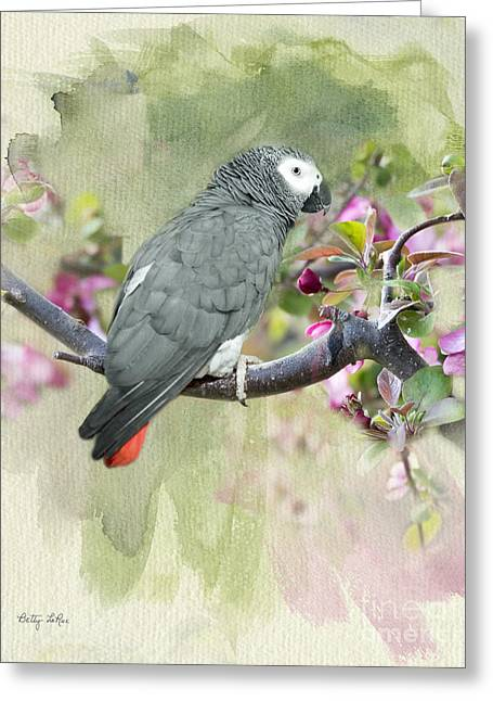African Gray Among The Blossoms Greeting Card by Betty LaRue