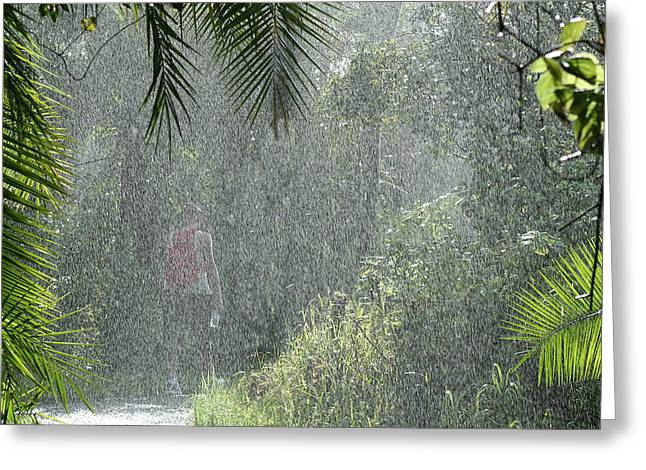 African Rain Greeting Card