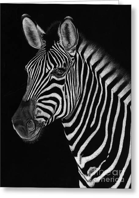 African Stallion Greeting Card by Sheryl Unwin