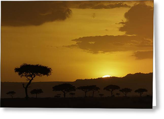 African Sunrise Greeting Card by Sebastian Musial
