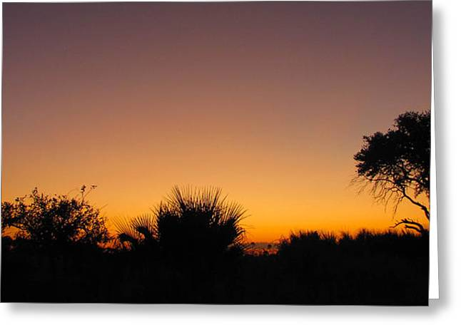 African Sunset Greeting Card by Karen E Phillips