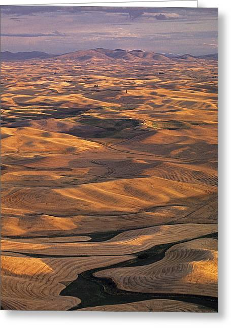 After Harvest From Steptoe Butte Greeting Card by Latah Trail Foundation