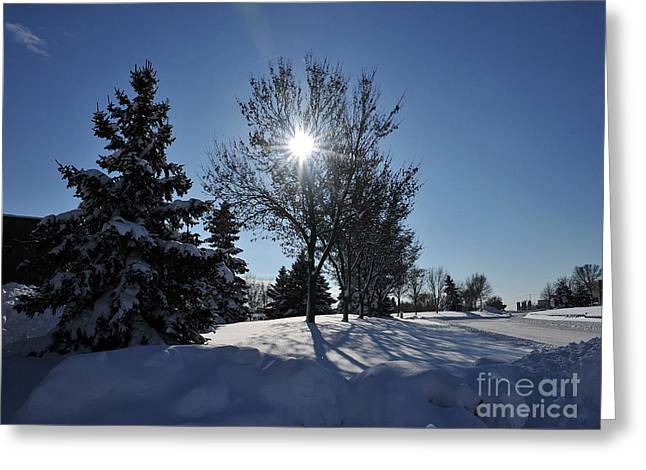 After The Snow 3 Greeting Card by Graham Taylor