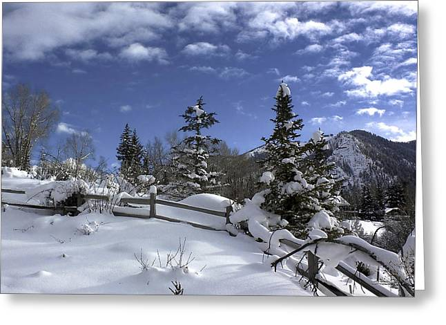 After The Snow Greeting Card by Kim Hojnacki