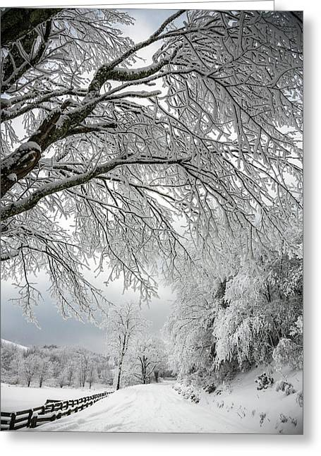 After The Snow Storm Greeting Card by John Haldane