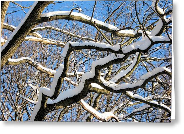 After The Snowfall 2 Greeting Card by Dennis Lundell