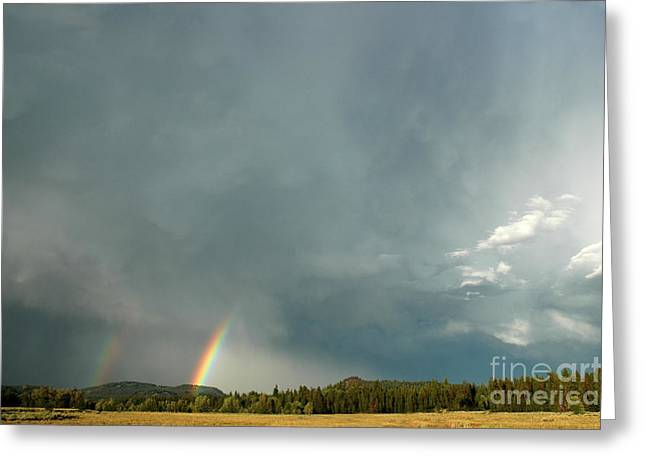 After The  Storm Greeting Card by Alan Russo