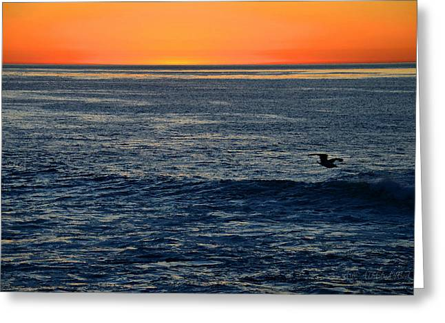 After The Sunset Glow In La Jolla Greeting Card by Sharon Soberon