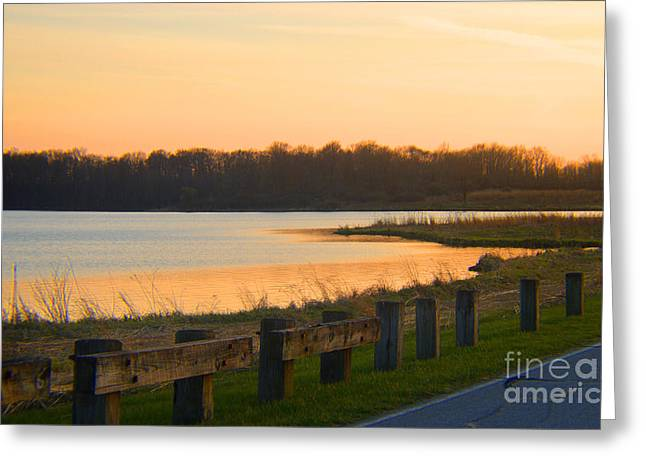 Afterglow By The Lake Greeting Card by Tina M Wenger